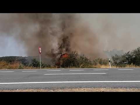 Incendio forestal en Perales del Puerto