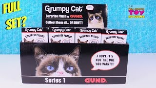 Grumpy Cat Surprise Plush Series 1 Toy Review Opening | PSToyReviews