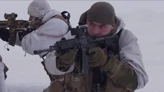 видео: Владимир Нелюбин - Мерцал закат (Баллада об альпийских стрелках /кавер-версия/)