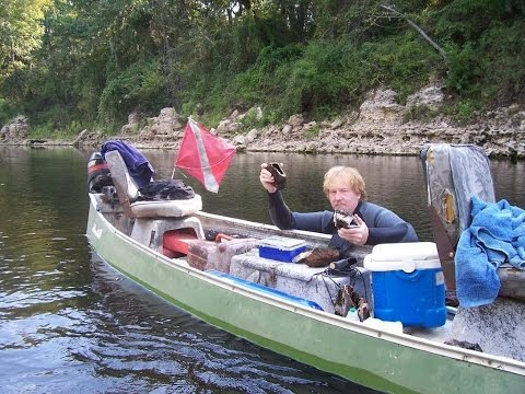 Gem Hunting Florida for Agatized Coral Druzy