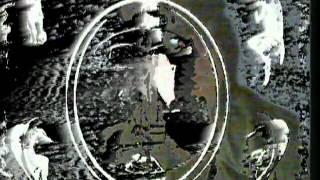 Mach FoX - the inquiry