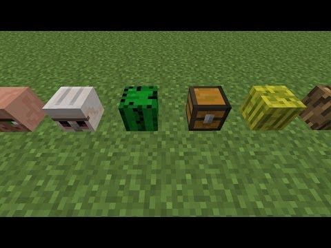 GEHEIME Blöcke In Minecraft - Minecraft spielerkopfe 1 8