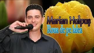 MARIAN HULPUS - ROUA DE PE LALEA