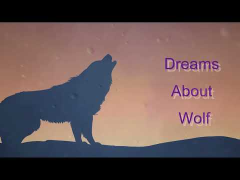 Dreams About Wolf | Dreams Meaning And Interpretation