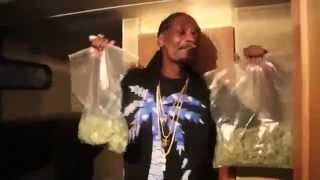 Snoop Dogg с пакетами травы