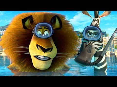 DreamWorks Madagascar en Español Latino | Alex y Marty Mejores Momentos | Dibujos Animados