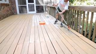 Thompsons Waterseal Waterproofing Solid Stain In Harvest Gold