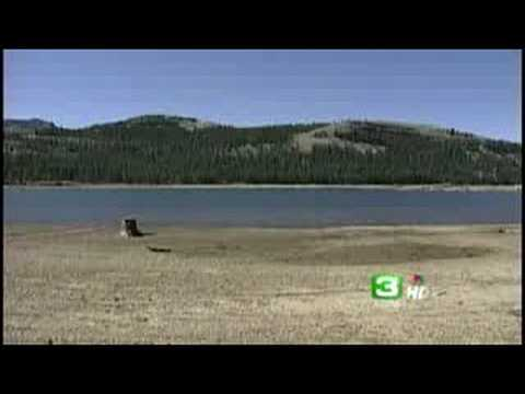 Fish rescue under way at caples lake youtube for Caples lake fishing report
