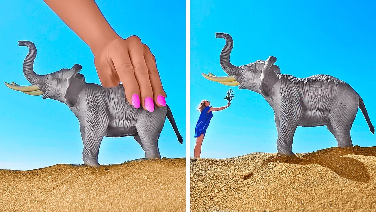Creative Photo And Video Tricks Using Everyday Objects