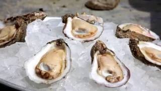 Prestige Oysters Inc. - Best Oysters - Texas 2016
