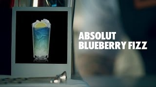 Absolut Blueberry Fizz Drink Recipe - How To Mix