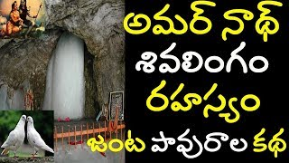 amarnath cave mystery | amarnath temple secret | amarnath real pigeon story amarnath yatra 2019