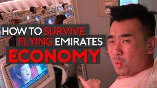 How To Survive Flying Emirates Economy Class Top Tips