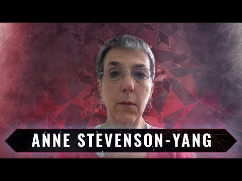 China's Economy in Crisis | Inside the Chinese Financial System with Anne Stevenson-Yang