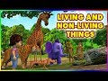 Living And Non - Living Things (4K)