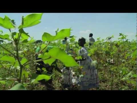 Building Brands and Empowering Communities in Uganda