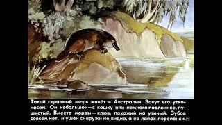 Кто мёртвый кусается. И. Акимушкин. Рассказы о животных