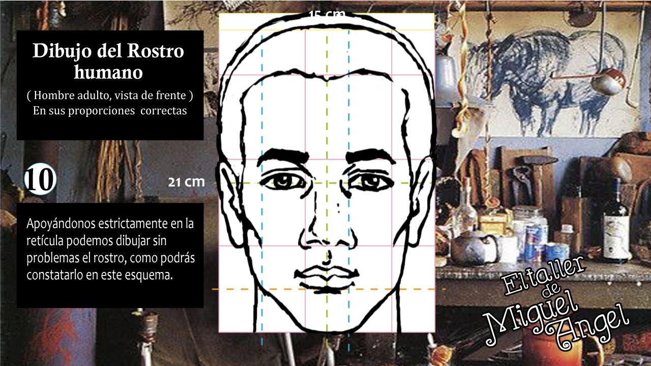 Cmo dibujar el rostro  En 10 fciles pasos  YouTube