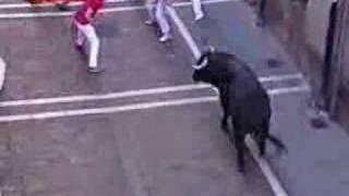 Running of the Bulls Encierro 12 July 2007 Pamplona Spain 2
