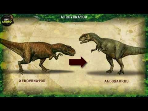 Afrovenator   ABCsaurio