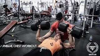 Animal Chest Workout With Marc Fitt