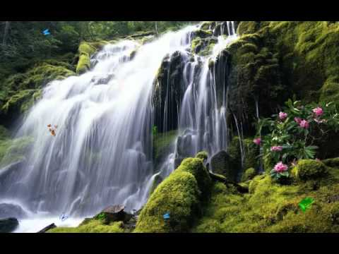 3d Wallpapers Desktop Free Download Animation Windows 7 Exotic Waterfall Screensaver Http Www Screensavergift