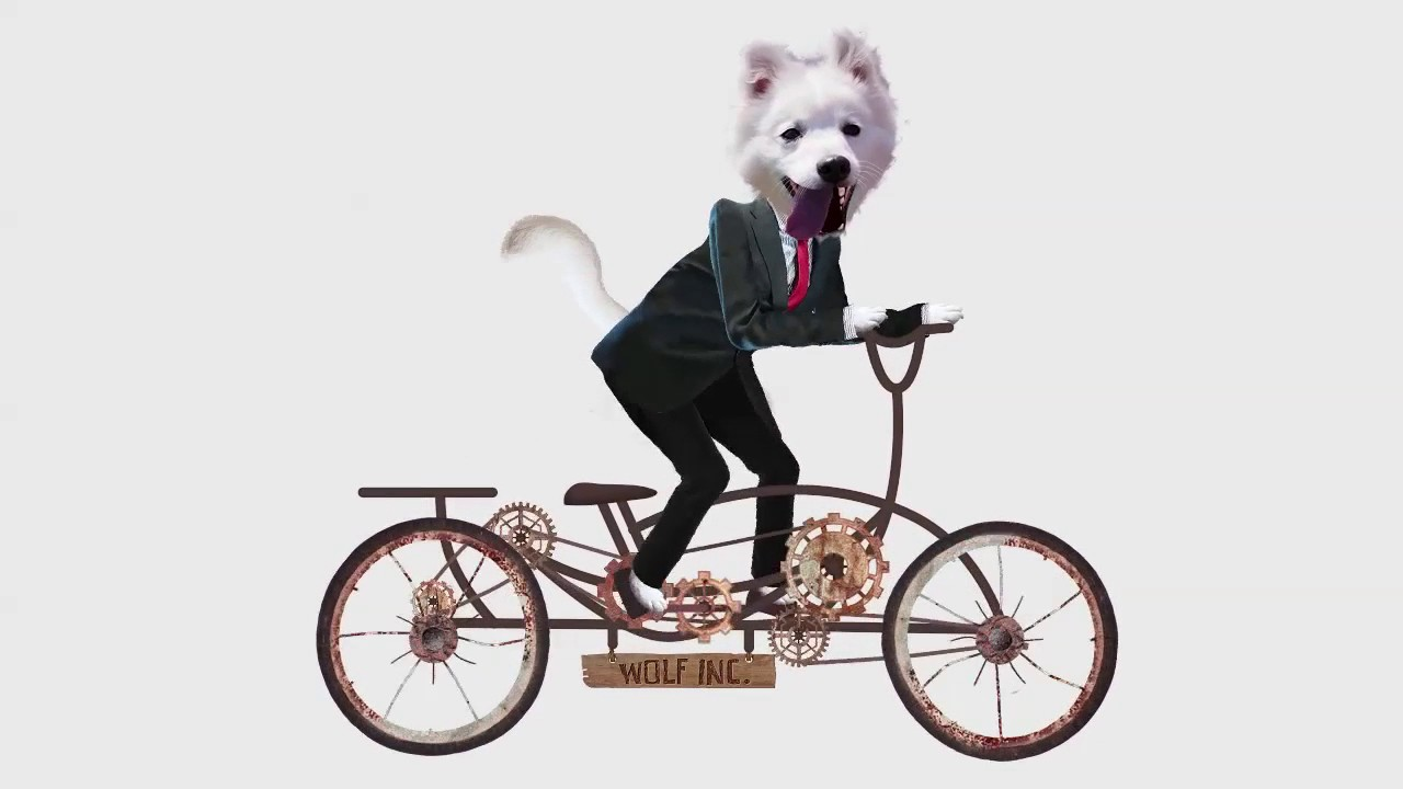 funny dog riding bicycle meme