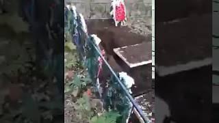 Медведь раскопал могилы! Республика Карелия, Медвежьегорский район, близ поселка Лумбуши