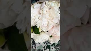 видео Закажите цветы с доставкой на дом для любимой
