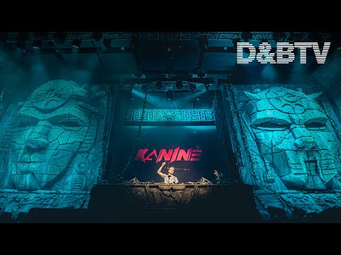 Kanine - D&BTV X Let It Roll Winter 2020 (DJ Set)