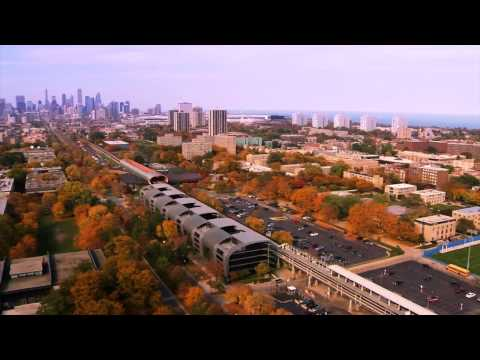 Illinois Institute Of Technology Professional Learning Programs