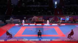 Finale World Combat Games 2013