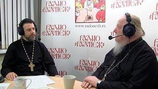 Радио «Радонеж». Протоиерей Димитрий Смирнов. Видеозапись прямого эфира от 2017.10.21