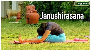 Janushirasana (Head to Knee Pose) | ஜானு சிரசாசனம் | Stretching Pose | Yoga