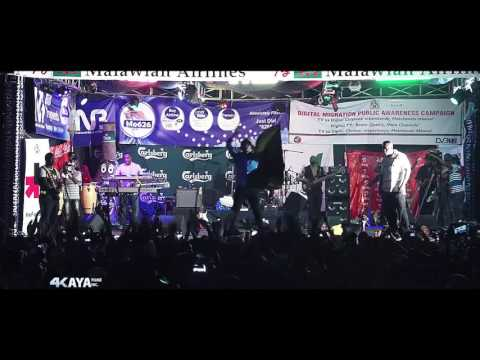 Busy signal live in malawi highlights ...
