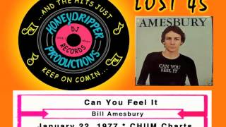 Bill Amesbury - Can You Feel It - 1977
