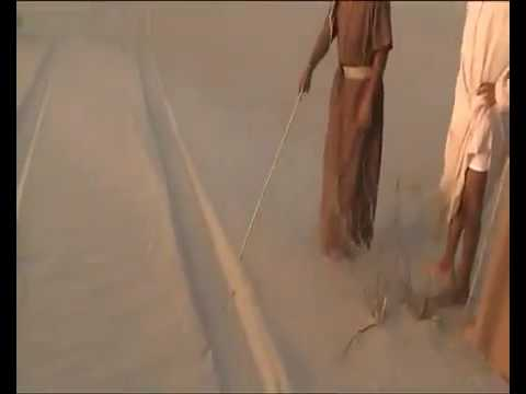 The fun of hunting in the Arabian Peninsula