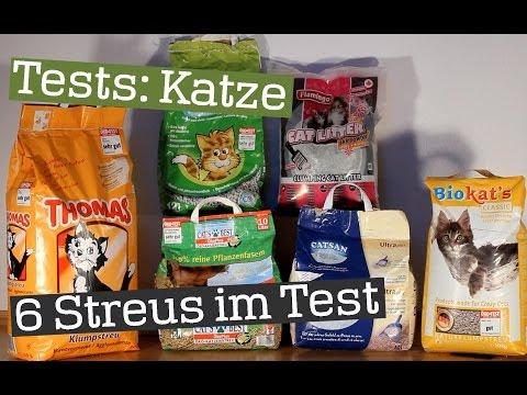 Der ultimative Katzenstreu Test | 6 Streus im großen Praxistest