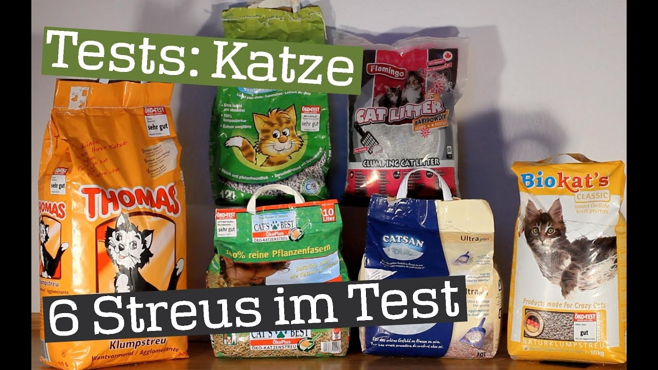 Der Ultimative Katzenstreu Test 6 Streus Im Großen Praxistest