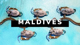 MALDIVES TRAVEL DOCUMENTARY | The Pearls of the Indian Ocean