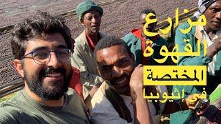 مزارع القهوة المختصة في إثيوبيا - نايف جلخف - الحلقة الأولى