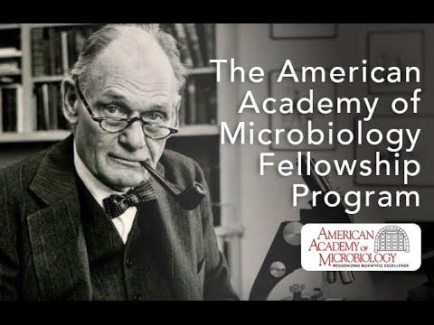 The American Academy of Microbiology Fellowship Program