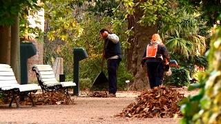 5 consells per al bon manteniment de les ferramentes de jardineria