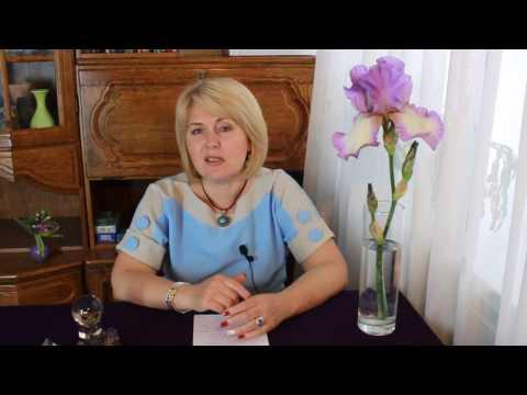 Женский журнал . Статьи, рецепты, сонник