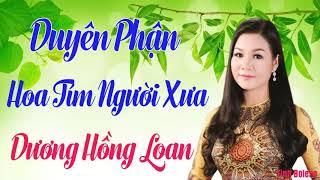 Dương Hồng Loan 2018 - Nhạc Vàng cực Buồn hoa tim người xưa