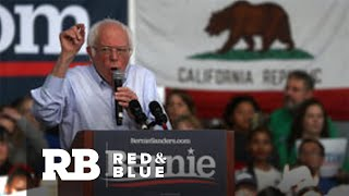 Bernie Sanders leads in California polls ahead of Super Tuesday