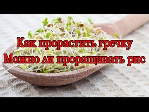 Рис или гречка для похудения отзывы