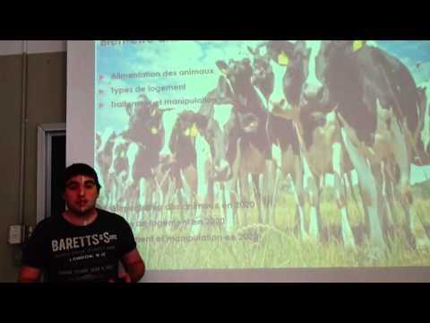 Le bien être animal dans l'agriculture québécoise