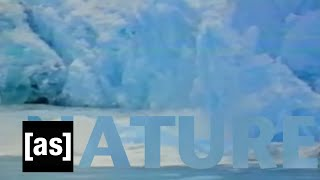 Nature | Off the Air | Adult Swim
