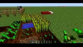 Minecraft: Poradnik - Jak rozmnażać zwierzęta?